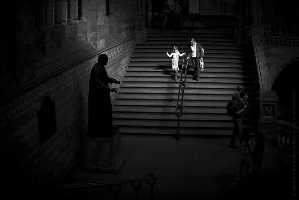 White Angel - In National History Museum, London by Miodrag mitja Bogdanovic